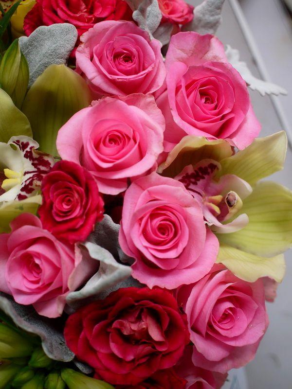 玫瑰/在希腊,玫瑰在神祗中是爱和美的象征,而在人间则用来表达人类...